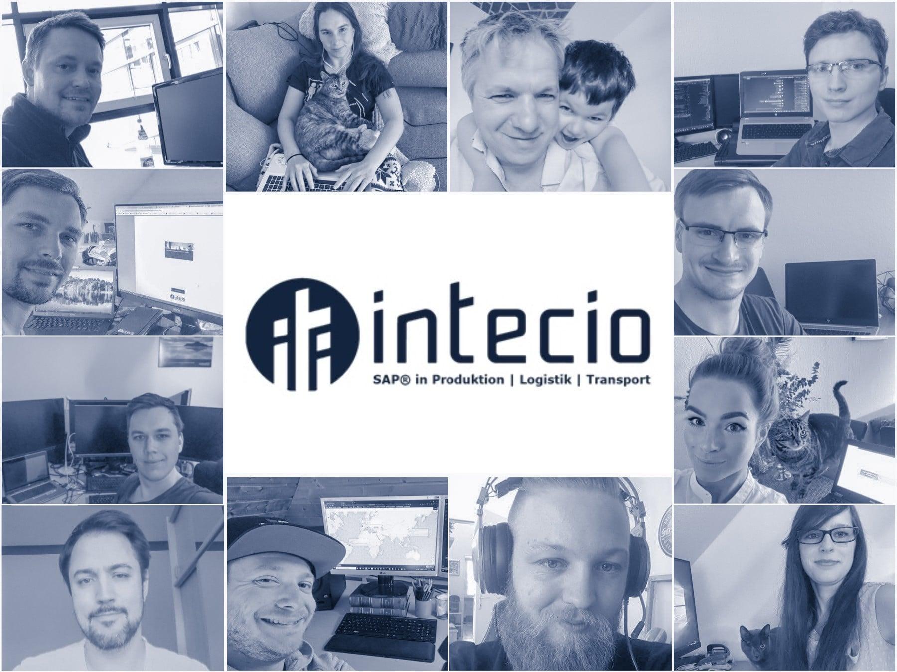 INTECIO Team